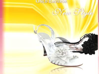 金帝-时尚女鞋