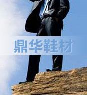 鼎华高档热熔胶片鞋材,欢迎广大经销代理商前来洽谈合 招商热线:13665928833